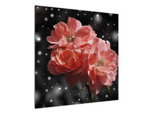 Obraz růžové květiny (V020471V7070)