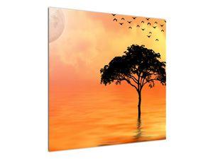 Obraz stromu v západu slunce (V020480V7070)