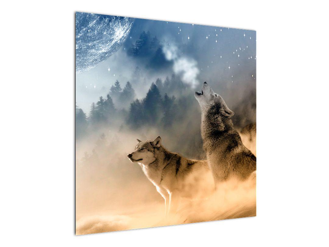 Slika - vukovi zavijaju na mjesec (V020509V7070)
