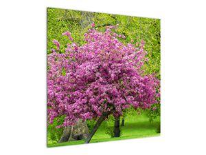 Obraz rozkvetlého stromu na louce (V020654V7070)