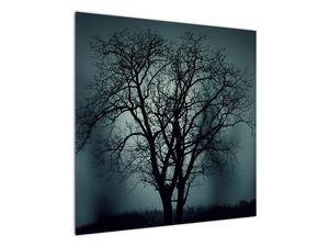 Obraz stromu v zatmění (V020675V7070)