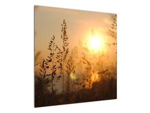Obraz východu slunce (V020870V7070)