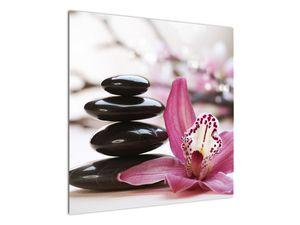 Obraz masážních kamenů a orchidee (V020910V7070)