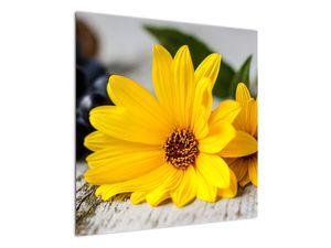 Obraz žluté květiny (V020952V7070)
