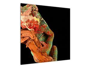 Obraz chameleona na větvi (V021125V7070)