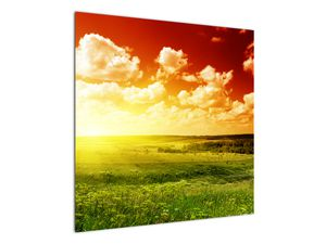 Obraz lúky so žiariacim slnkom (V021174V7070)