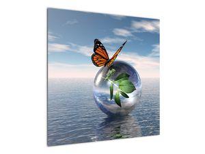 Obraz motýla na skleněné kouli (V021198V7070)