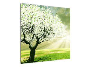 Obraz stromu na lúke (V021282V7070)