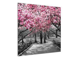 Obraz stromů Magnolíie (V021344V7070)