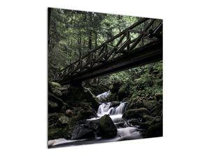 Obraz z černého lesa (V021686V7070)