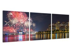 Tablou cu artificii in Singapur (V020035V9030)