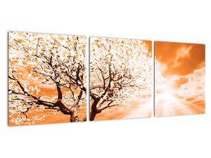 Oranžový obraz stromu (V020095V9030)