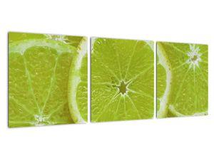 Kép - citrom szelet (V020164V9030)