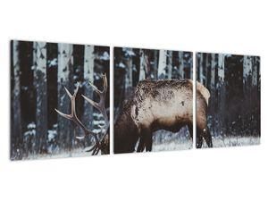Obraz - jeleň v zime (V020179V9030)