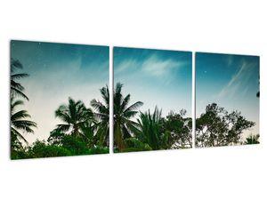 Tablou - palmierii (V020239V9030)