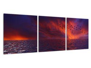 Obraz moře s ptáky (V020351V9030)