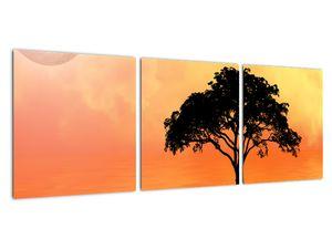 Obraz stromu v západu slunce (V020480V9030)