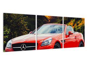Obraz - červený Mercedes (V020564V9030)