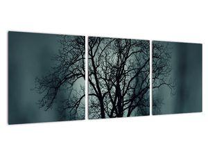 Obraz stromu v zatmění (V020675V9030)