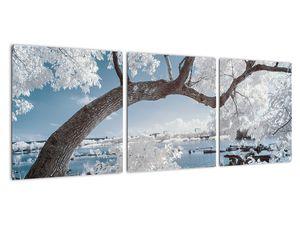 Obraz zasněženého stromu u vody (V020718V9030)