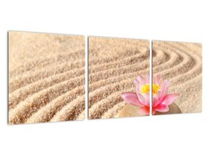 Obraz kameňa s kvetinou na piesku (V020864V9030)