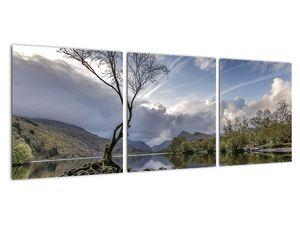 Obraz řeky se stromem (V020917V9030)