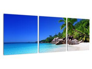 Obraz pláže na Praslin ostrově (V020936V9030)