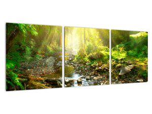 Obraz řeky v zeleném lese (V020942V9030)