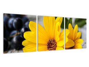 Obraz žluté květiny (V020952V9030)