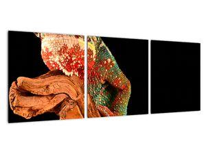 Obraz chameleona na větvi (V021125V9030)
