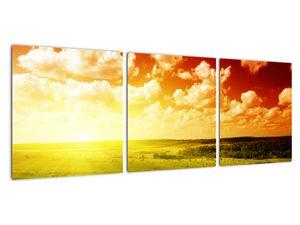 Obraz lúky so žiariacim slnkom (V021174V9030)