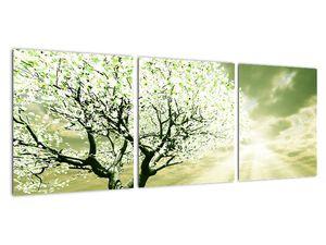 Obraz stromu na lúke (V021282V9030)