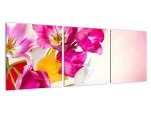 Obraz tulipánov (V021295V9030)