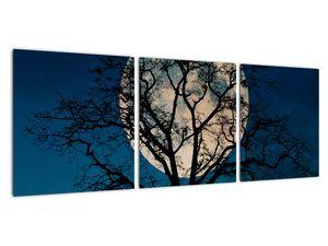 Obaz stromu s úplňkem (V021355V9030)