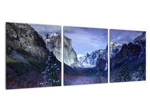 Obraz - Yosemite, USA (V021518V9030)