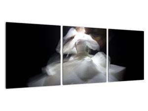 Lótuszvirág képe (V021597V9030)