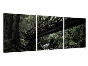 Obraz z černého lesa (V021686V9030)