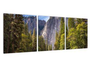 Kép - A Yosemite szikla alatt (V021691V9030)