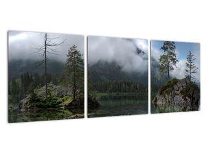 Obraz stromů v jezeře (V021702V9030)