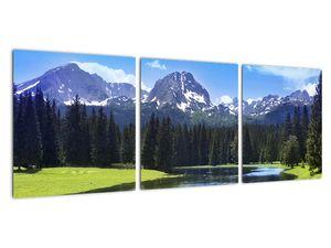 Obraz - Zasněžené vrcholky hor (V021908V9030)