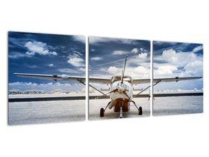 Obraz motorového letounu (V021915V9030)