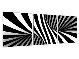 Abstraktní obraz se zebrovými pruhy (V021960V9030)