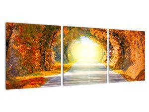 Obraz - Brána z korun stromů (V022002V9030)
