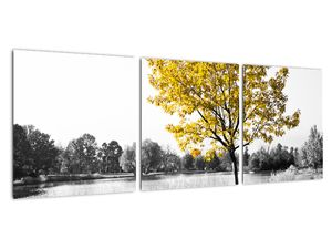 Obraz - Odpočinek v parku (V022039V9030)