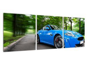 Obraz - Závodní auto (V022235V9030)