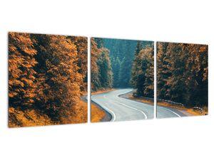 Obraz - Klikatící se silnice (V022279V9030)