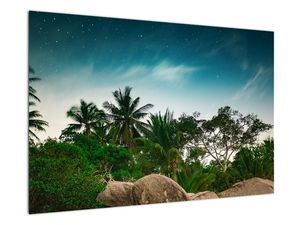 Tablou - palmierii (V020239V9060)
