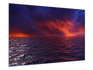 Obraz moře s ptáky (V020351V9060)