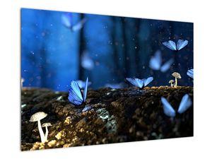 Obraz modrých motýlů (V020434V9060)