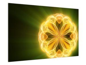 Obraz žluté květiny (V020451V9060)